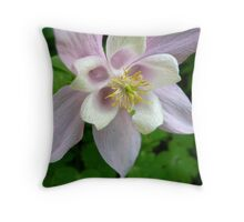 Tiny Rosa Flower Power Throw Pillow