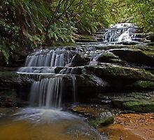 Leura cascades by rossandcher