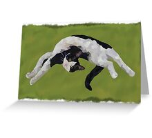 Zorro is watching - Green Greeting Card