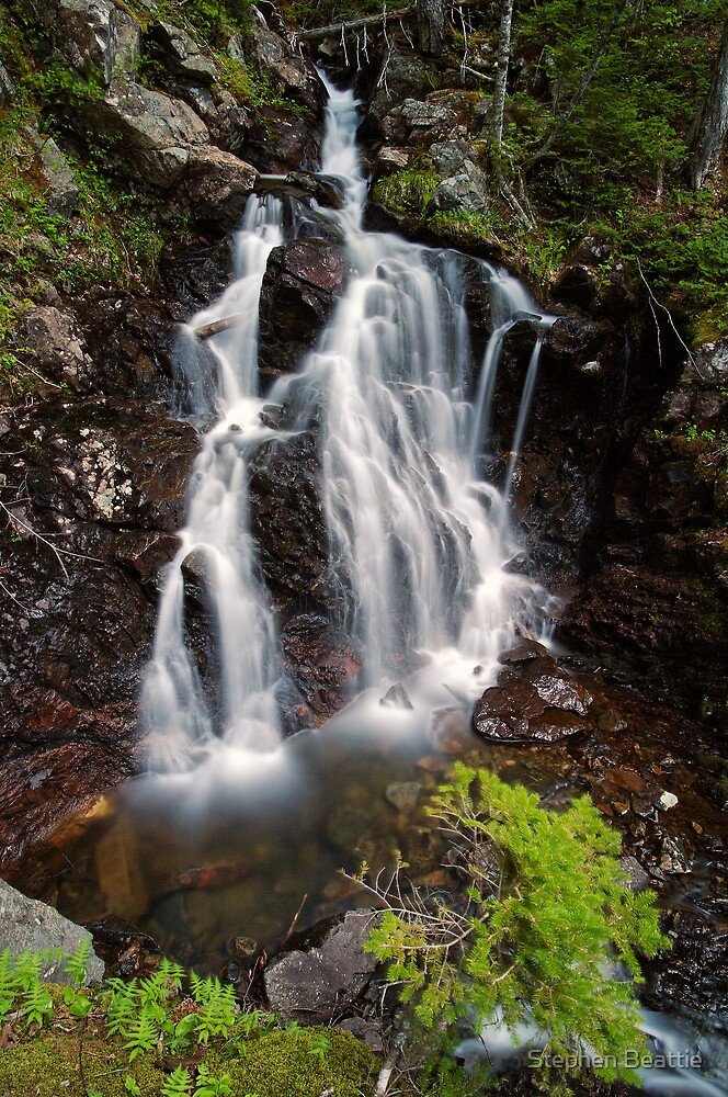Upper Section of Corney Brook Falls by Stephen Beattie