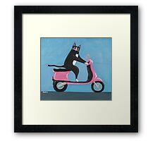 Cat on a Vespa Framed Print