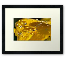 Water Bombs Framed Print