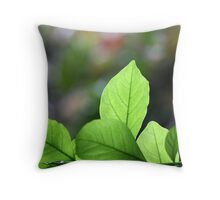 winter light catcher Throw Pillow