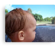 Baby Jac ~ Leanyer Recreation Park NT 2005 Metal Print