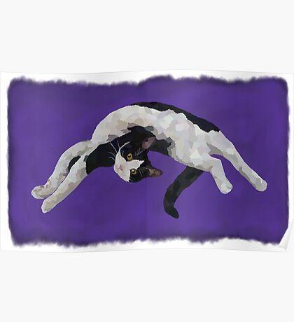 Zorro is watching - Purple Poster