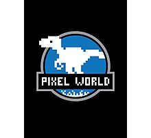 Pixel World Photographic Print