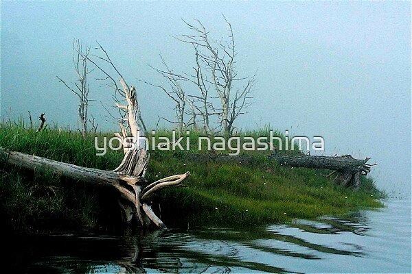 The shore scene, Shan Tar Island, Russian Far East by yoshiaki nagashima