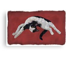 Zorro is watching - Red Canvas Print