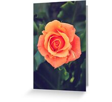 Swarovski Rose Greeting Card