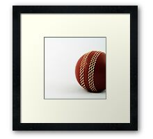 Nostalgic Toys Series - Cricket Framed Print