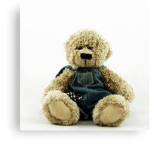 Nostalgic Toys Series - Teddy Canvas Print