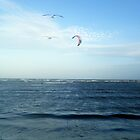 Altona Beach ~ Victoria by Margaret Walker