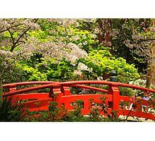 Red Bridge Springtime Photographic Print