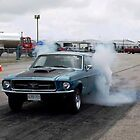 Racing 1967 Mustang by roserock