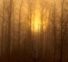 Fog Burner by Debby1