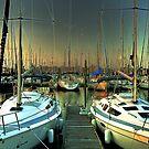 Boats in the Marina by Savannah Gibbs