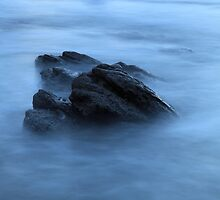 ClaireBear Rocks by tinnieopener