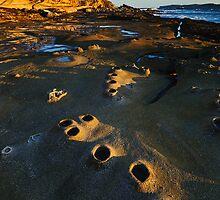 Follow the Mystery Path by Anton Gorlin