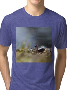 Duck by the Water Tri-blend T-Shirt