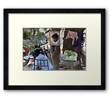 His reflection in the mirror. Framed Print
