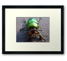 Weird and Freaky!  Only a Mother could Love! Framed Print
