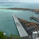 Port Napier, Napier, New Zealand by Neil Mouat