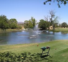 Turquoise Valley Golf Course -Az by Ann  Warrenton