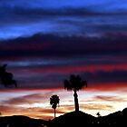 California Sunset by Cleber Photography Design