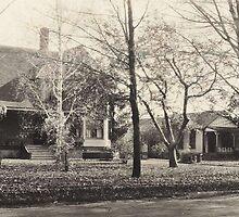 The House & Bungalow At Cedar Bank, Lewiston, NY by artwhiz47