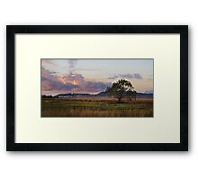 Willowtree - Felton Valley, Darling Downs, Qld Framed Print