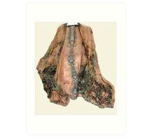 Silk Chiffon Cape. Art Print