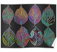 Glowing Pattern of Leaves Poster