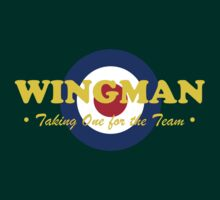 Wingman (RAF) by Paul James Farr