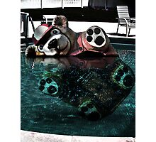 Bear Bobber Photographic Print