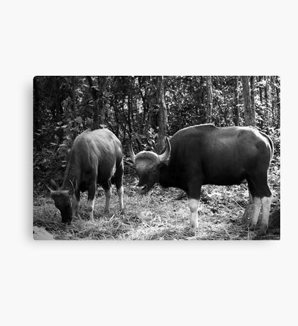 You better not take a picture of my wife!  Canvas Print