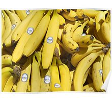 Food - bananas (Bonita #4011) Poster
