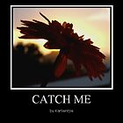 Catch me by Karlientjie