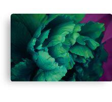 Green Peony Canvas Print