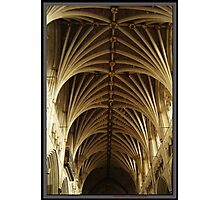 Exeter Cathedral Roof Photographic Print