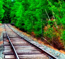 Riding the Rail by Monica M. Scanlan