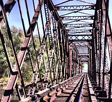 Train Trestle near Booneville Iowa by wileyphotoart