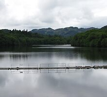 The view upstream from the dam at Pitlochry by Yvonne Mullen