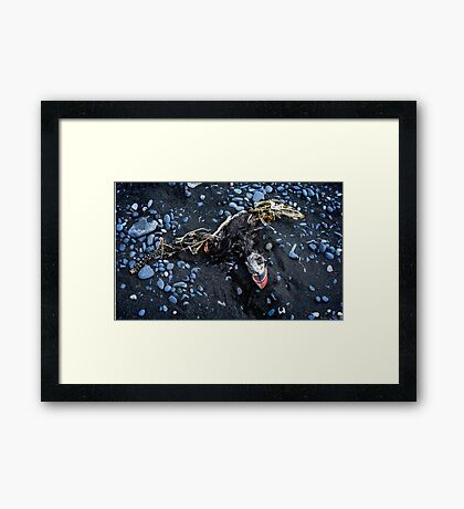 Rare the Evanescent Echo that Eeks out Existence in the Sands of Time Framed Print