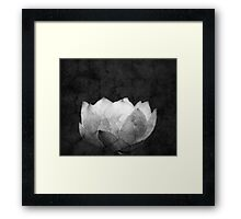 Lotus Projection Framed Print