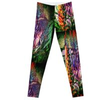 3649 Aloe Leggings