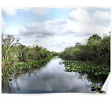 Everglade Lillies and Blue Sky Poster