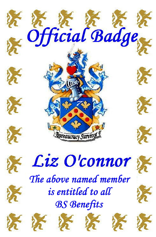 Welcome to the BS'ers Liz by WhiteDove Studio kj gordon