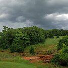 Rusty Lightning by Dennis Jones - CameraView