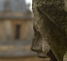 Radcliffe Camera from St Mary The Virgin by Matthew Walters