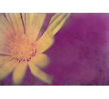 The Soft Wind Against My Cheek Photographic Print